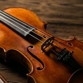 Neu im Angebot: Geige